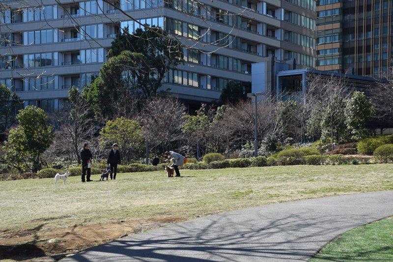 「港区立檜町公園」の広場