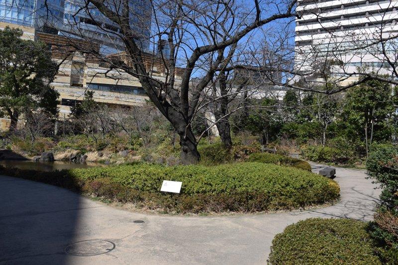 「六本木ヒルズ」の「毛利庭園」