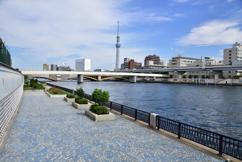 隅田川テラスからの眺め
