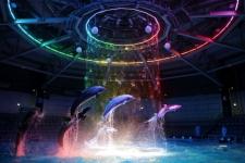216476_aquapark