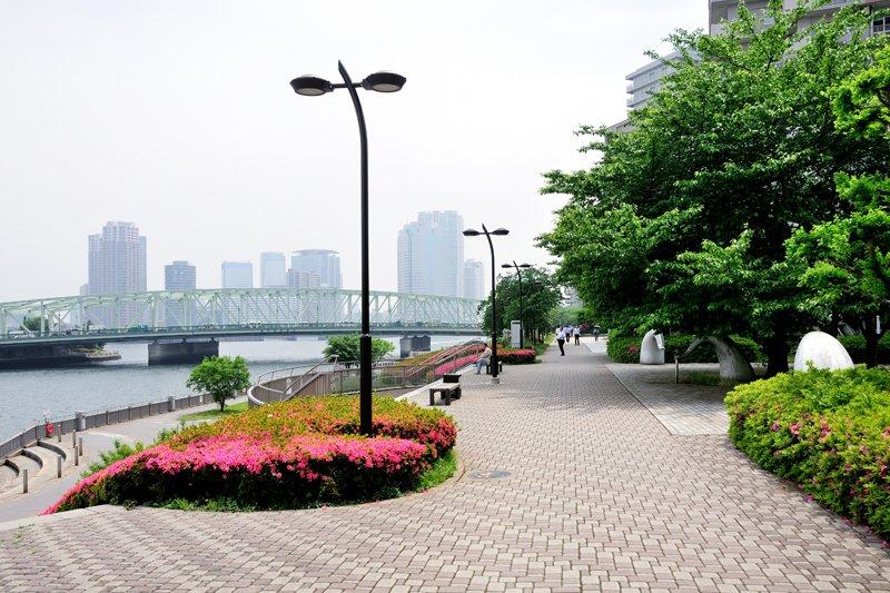 214921_14-01tsukishima