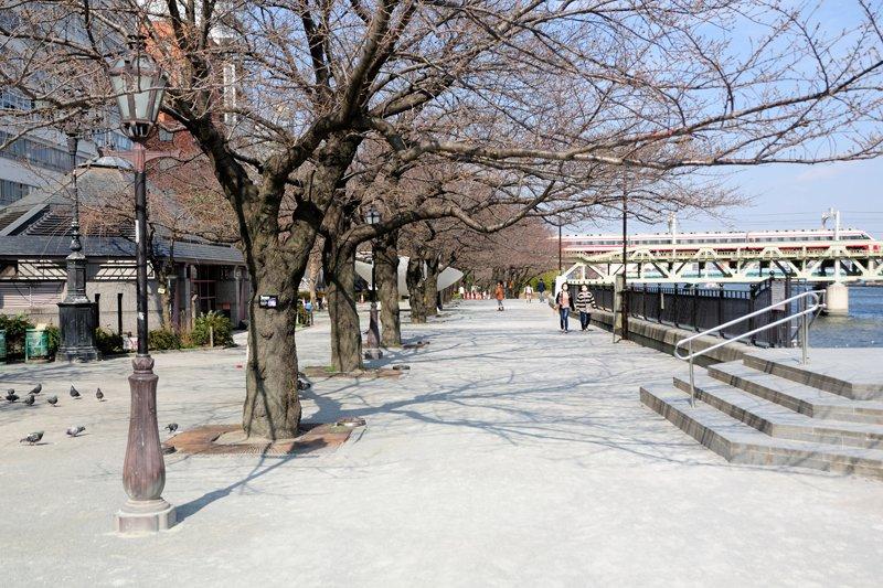 台東区立隅田公園