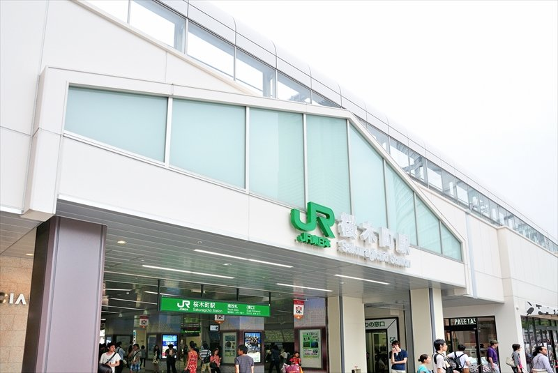 216660_00-sakuragicyoueki01